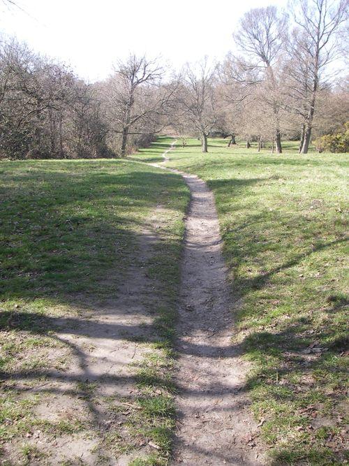 Path11