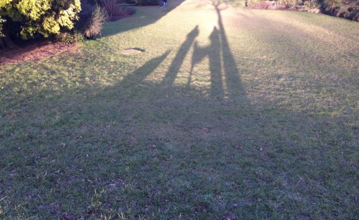 Shadow family Jan 2015